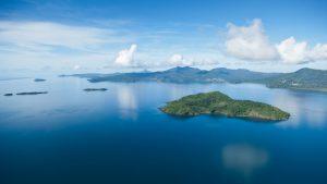 Les Naturalistes continuent d'entretenir la réserve naturelle de l'îlot M'Bouzi