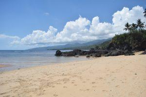 L'avenir du tourisme à Mayotte, une interrogation majeure pour les professionnels