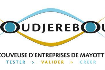 Oudjérébou lauréat de l'appel à projets en faveur de l'égalité économique entre les femmes et les hommes