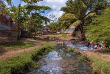 71 cas de leptospirose à Mayotte en 2020