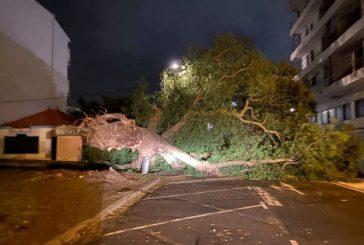 Le cyclone Niran a provoqué de nombreux dégâts en Nouvelle Calédonie pendant que la tempête Iman a généré de nombreux orages à La Réunion