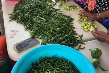Où encore trouver des marchés à Mayotte ?