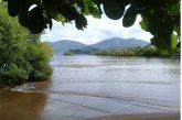 Mayotte Nature Environnement fête ses 10 ans d'existence